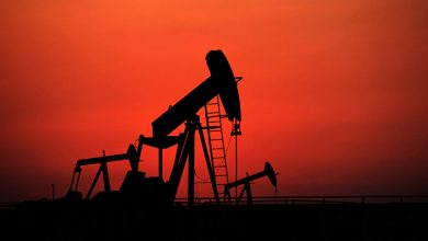 Norwegian expert predicts oil at