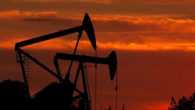 Photo of Oil prices fell below $ 25 per barrel