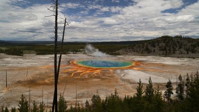 Part of Yellowstone the size of Chicago pulsating
