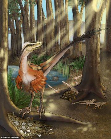 Reconstruction of Dineobellator notohesperus standing over a nes a