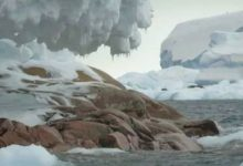 A previously unknown island was discovered near the South Pole