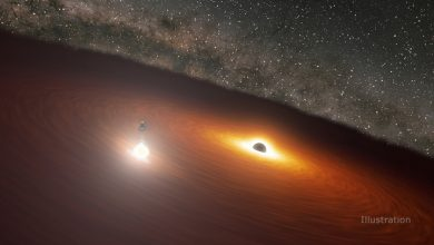 Astronomers with amazing accuracy foresaw the dance of a pair of black holes