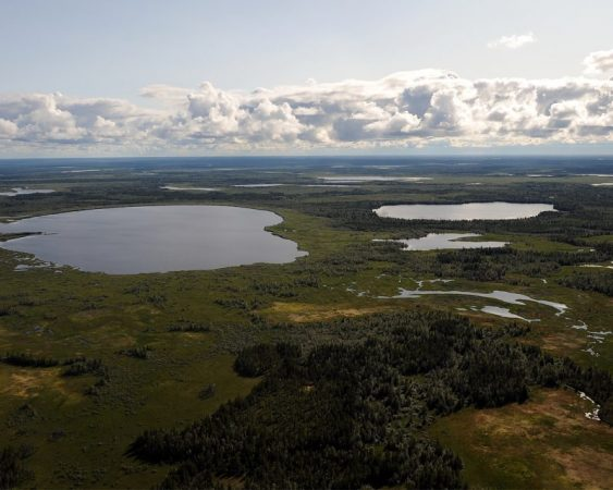 Reconstruction of ecosystems of Arctic lakes revealed