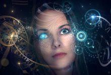 The human brain can predict the future