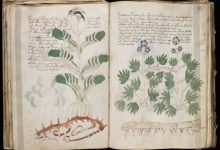 Voynich manuscript how scientists make sensations out of nothing
