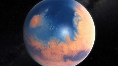 Photo of Mars could get its water reserves