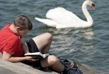 books for fun reading for the summer