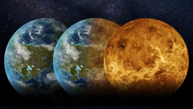Billions of years ago Venus was like Earth and could even be inhabited