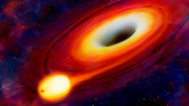 Can a black hole destroy the earth