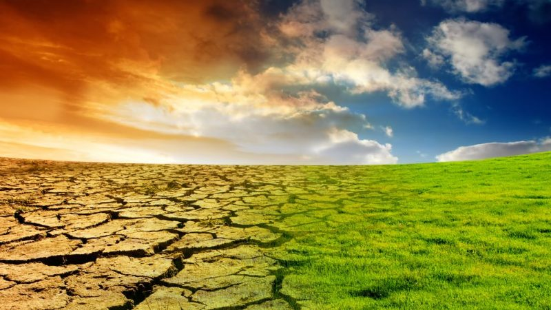Climate is changing on all continents