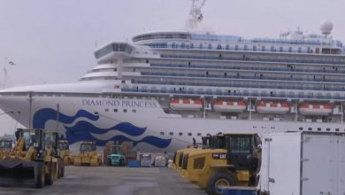 Diamond Princess liner leaves Japan for Malaysia
