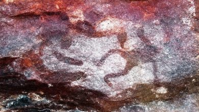 Disclosed the secret of tiny rock paintings in northern Australia