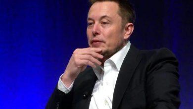 Elon Musk called statistics on coronavirus unreliable