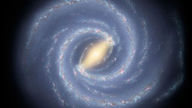 How are Black Holes formed and what are they