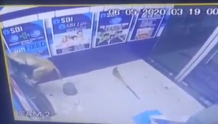 In India a monkey hacked an ATM