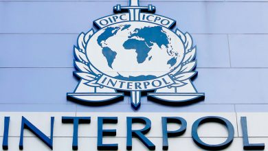 Interpol wanted the wife of a diplomat who knocked down a British teenager