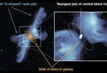 MeerKAT Radio Telescope in South Africa Reveals the Secret of X Galaxies