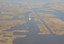 Mississippi delta swamps may soon be under water