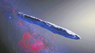 NASA funded scientists to send nanosatellites to Oumuamua