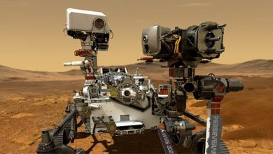 NASA rover discovered traces of ancient life in Australia