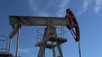 OPEC downgrades oil market recovery forecast