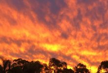 Record cold snap covers most of Queensland Australia