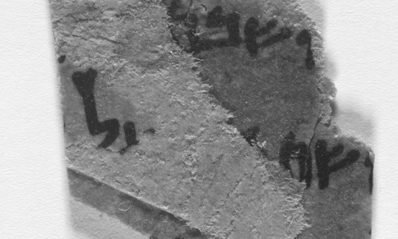 Scientists have discovered the text on the Dead Sea scrolls