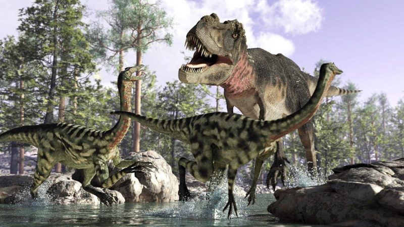 Scientists have found the flight path of an asteroid that killed dinosaurs