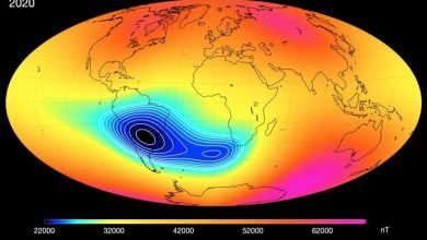 The mysterious anomaly weakening the Earths magnetic field is split in two