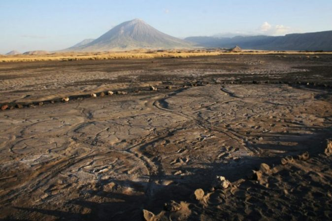 The record finding of petrified tracks allowed a glimpse into the life of the Paleolithic