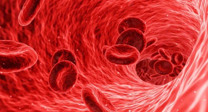 The relationship between coronavirus and thrombosis has been established