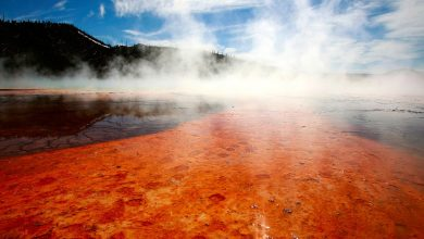 Yellowstone began to shake again more than earthquakes in a month