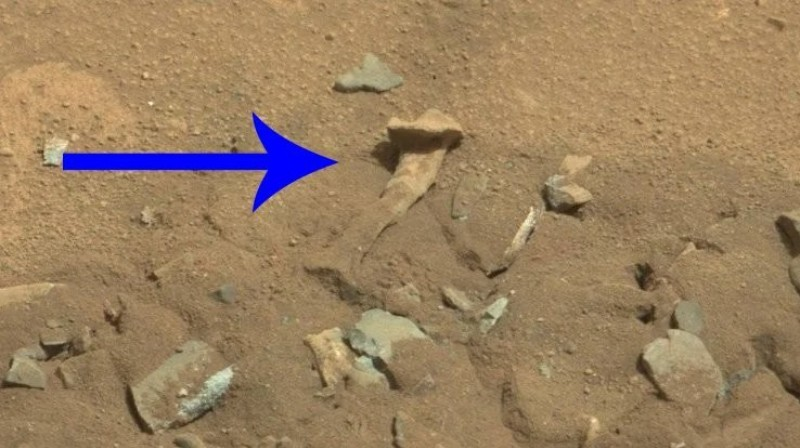 """""""Human bone"""" discovered on Mars NASA commented on the find"""