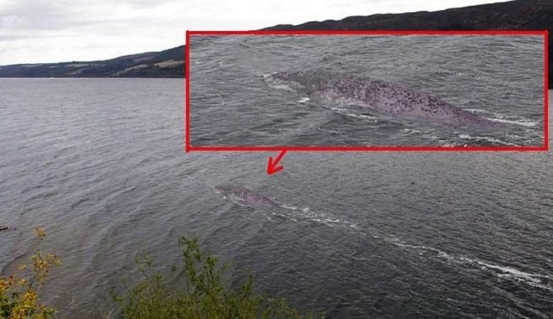 A resident of the UK claims to have captured the Loch Ness monster