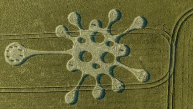Coronavirus like in the UK a strange pattern appeared on the field