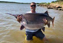 Fisherman caught an incredibly large paddlefish
