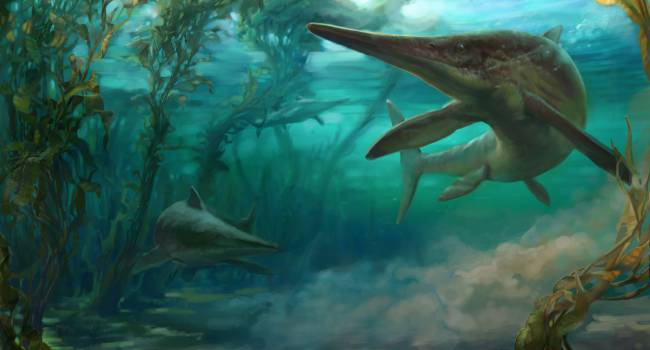 In North America the remains of a pregnant ichthyosaur