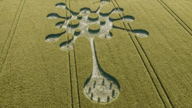 Photo of Coronavirus message from aliens appeared on the field