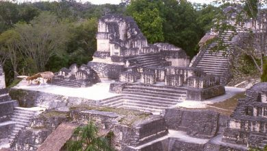 Photo of Mercury could cause the extinction of the ancient Mayan city