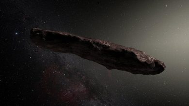 Photo of Scientists put forward a new theory of the origin of Oumuamua