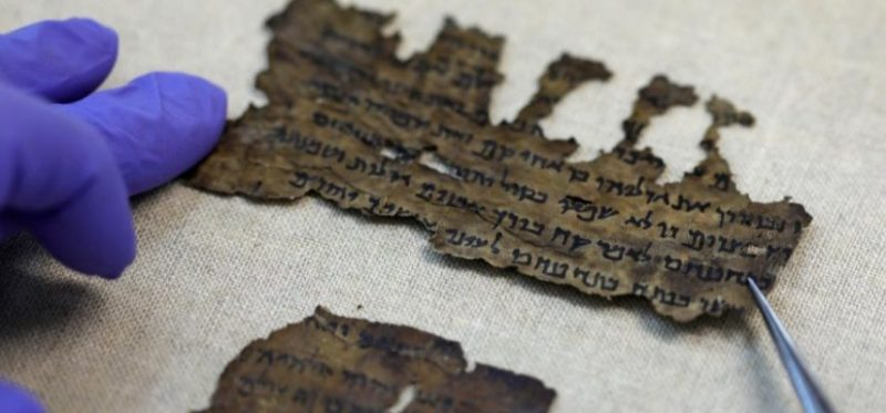Scientists have revealed some of the genetic secrets of the Dead Sea Scrolls