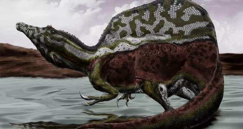 Spinosaurus brain spoke about his diet