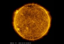 The largest outbreak in a few years occurred on the sun