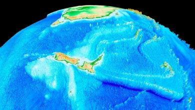 Photo of The ancient continent of Zealand has an interactive map