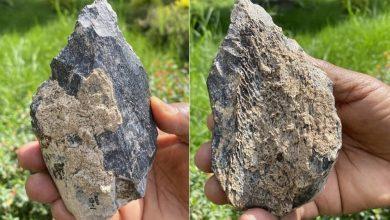 1 4 million year old bone ax found in Africa