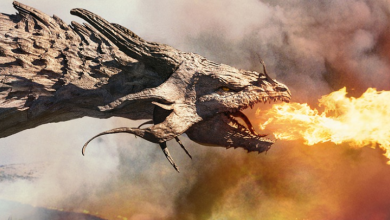 Ancient records and the 1934 newspaper have evidence of dragons