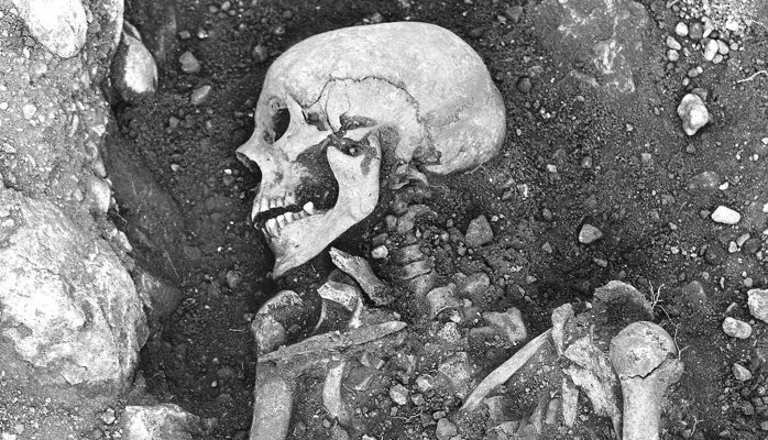 Ancient viral DNA from the Viking Age brings scientists closer to the origin of smallpox