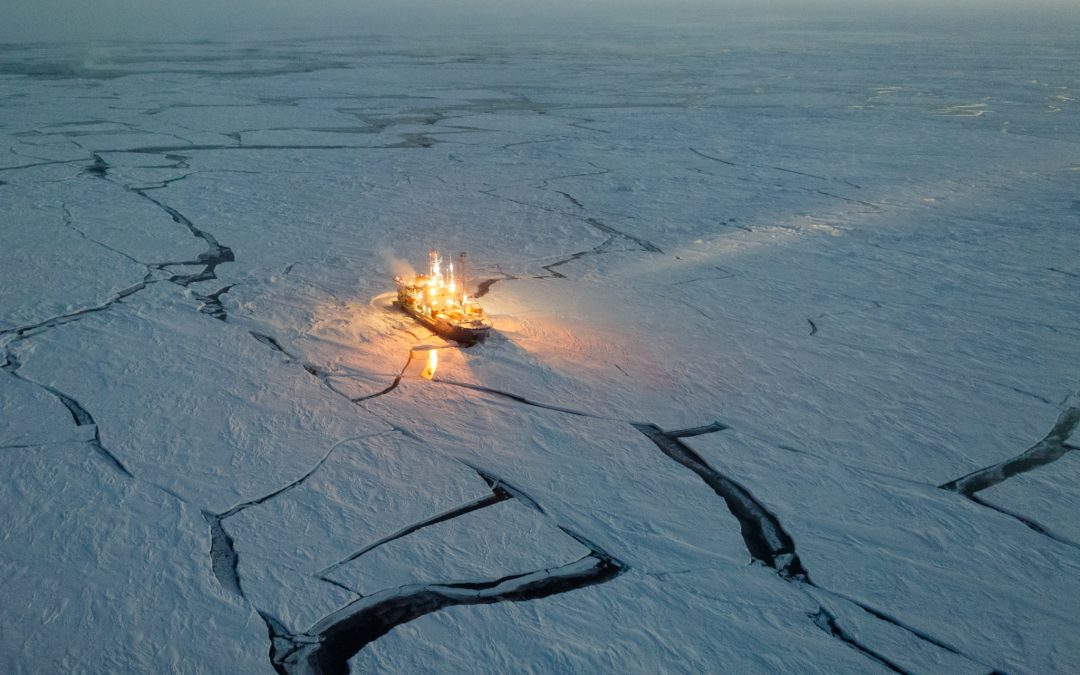 Arctic waters began to bloom 2