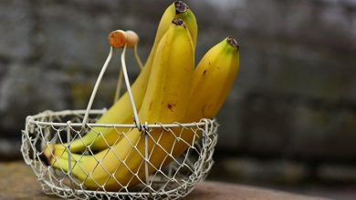 Photo of Bananas are recognized as an alternative to sleeping pills