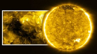 European probe has taken the most detailed pictures of the Sun
